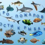 Добро пожаловать в гости к рыбам!