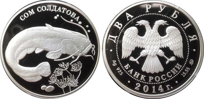 монета с изображением сома Солдатова